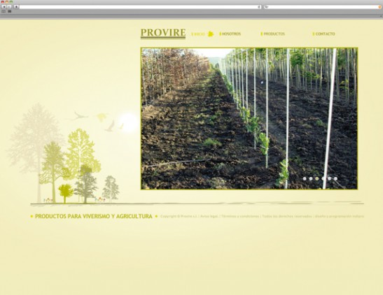 Diseño web - indiproweb - Provire