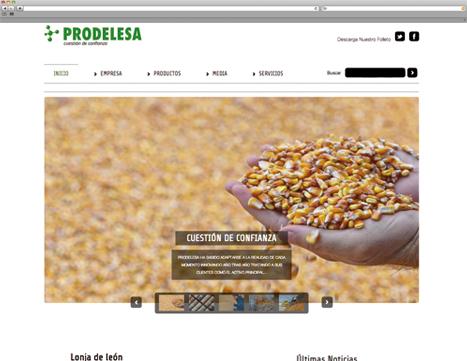Diseño Web - Indiproweb - Prodelesa